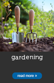Gardening Cleaning